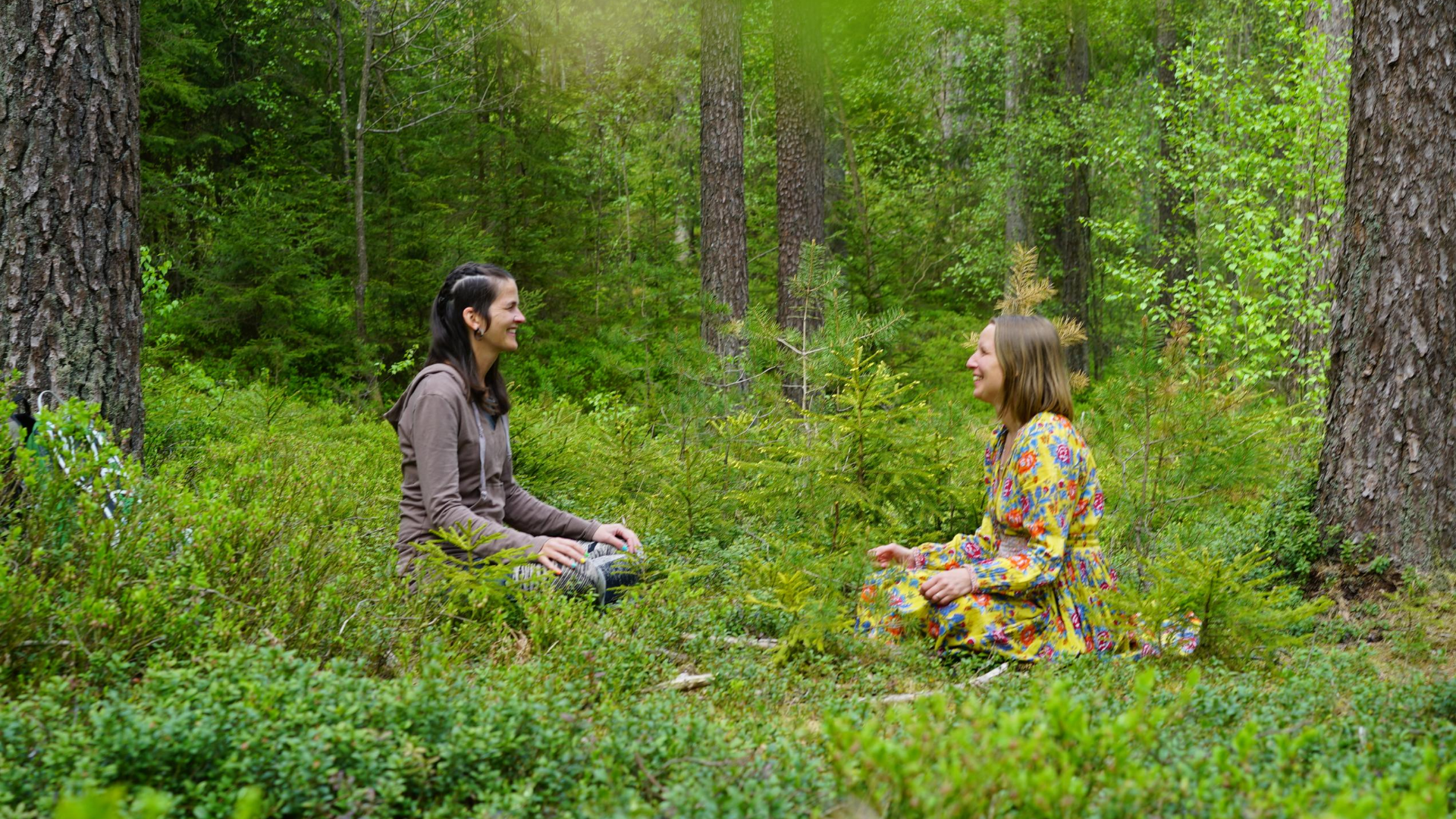 La Lindbladh Life Coaching Retreat Forest Bathing Shinrin Yoku